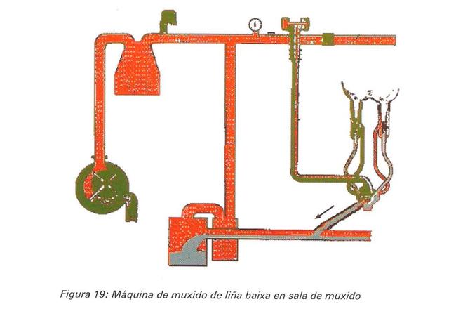 maquina-muxido-lina-baixa-en-sala-muxido-