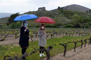 A DO Monterrei propón crear un centro vitivinícola orientado ao enoturismo