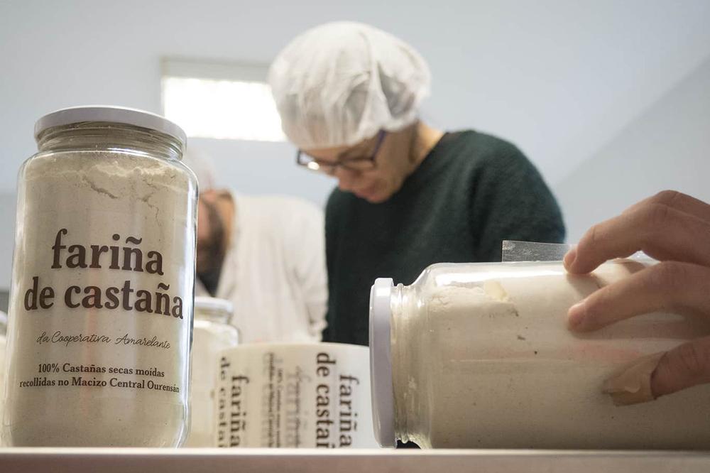 Labores de envasado e etiquetaxe da fariña de castaña