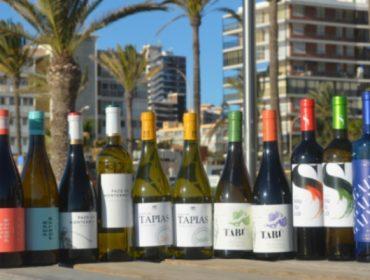 Máis de cen distribuidores reúnense en Alicante para coñecer os viños da DO Monterrei