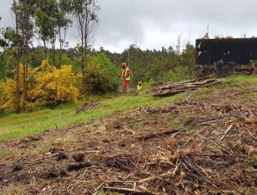 Chamamento para deixar limpo o monte próximo a vivendas antes de fin de mes