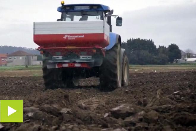 Entec, un fertilizante de alto rendemento para millo
