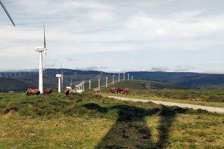 Que factores poden frear a instalación dun parque eólico en Galicia?
