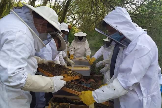 Curso en Moeche sobre normativa y procesos de transformación y comercialización de productos hortofrutícolas y miel
