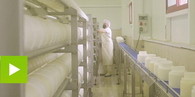 A arte de facer queixo: tempo, tradición e talento