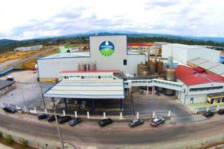 Oviganic impulsará a produción de leite de ovino e cabrún en Galicia