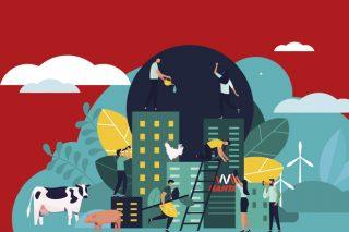 Granxa Circular: a proposta de Nanta para avanzar na sustentabilidade da gandería