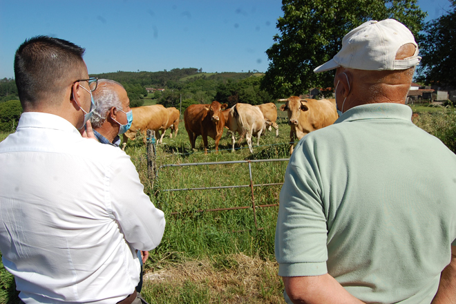 O conselleiro de Medio Rural, José González, este sábado nunha explotación de rubia galega na Peroxa