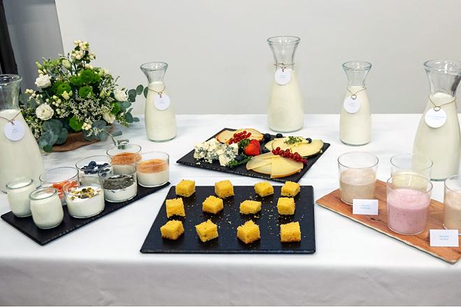 lacteos leite iogur queixo