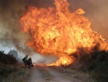 O 87% da superficie forestal queimada é monte raso, sen arborado