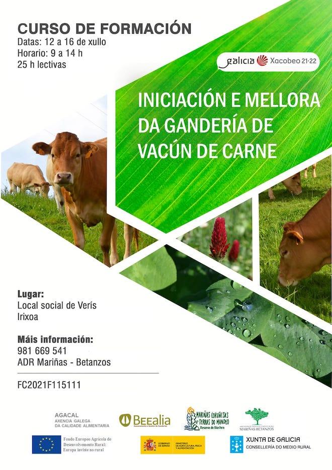 Curso vacun de carne_ Irixoa