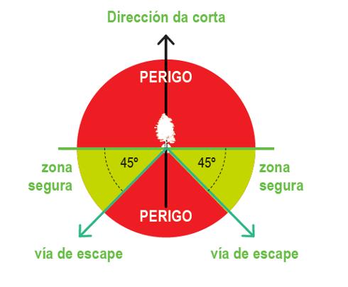 ISSGA CORTA ARVORES SENTADAS 1