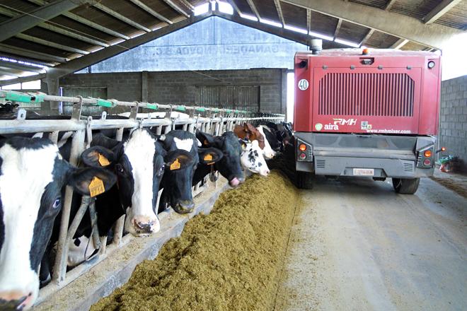 Así lles está afectando a suba do penso ás granxas de vacún de leite: