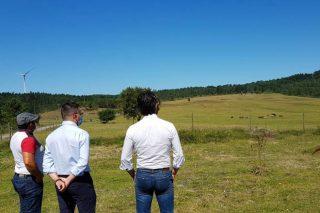 O Plan de Pastos da Xunta prevé actuar en 2.250 hectáreas de monte