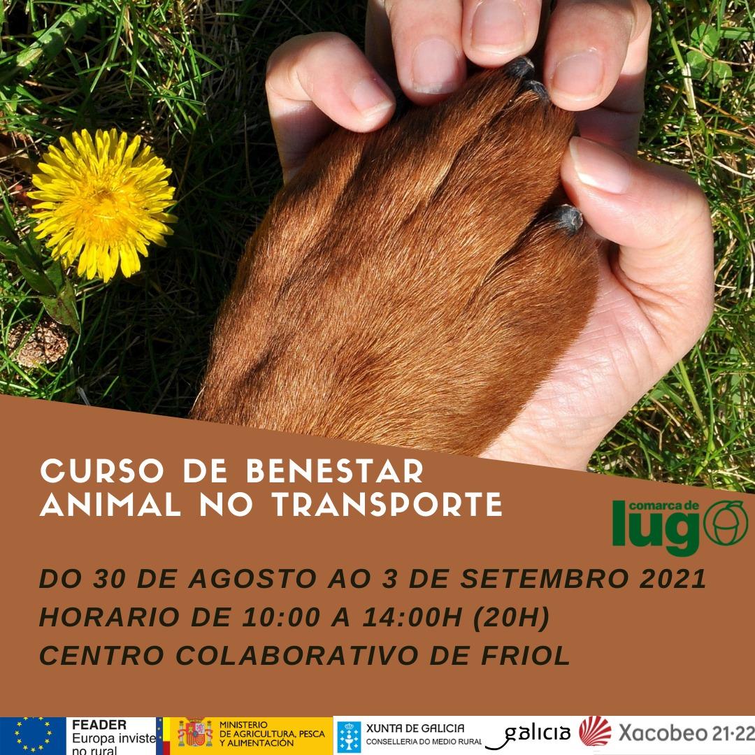CURSO BENESTAR ANIMAL FRIOL