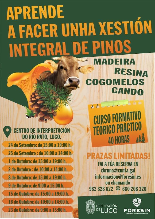 Cartel curso Lugo Gestión Integral Pinos