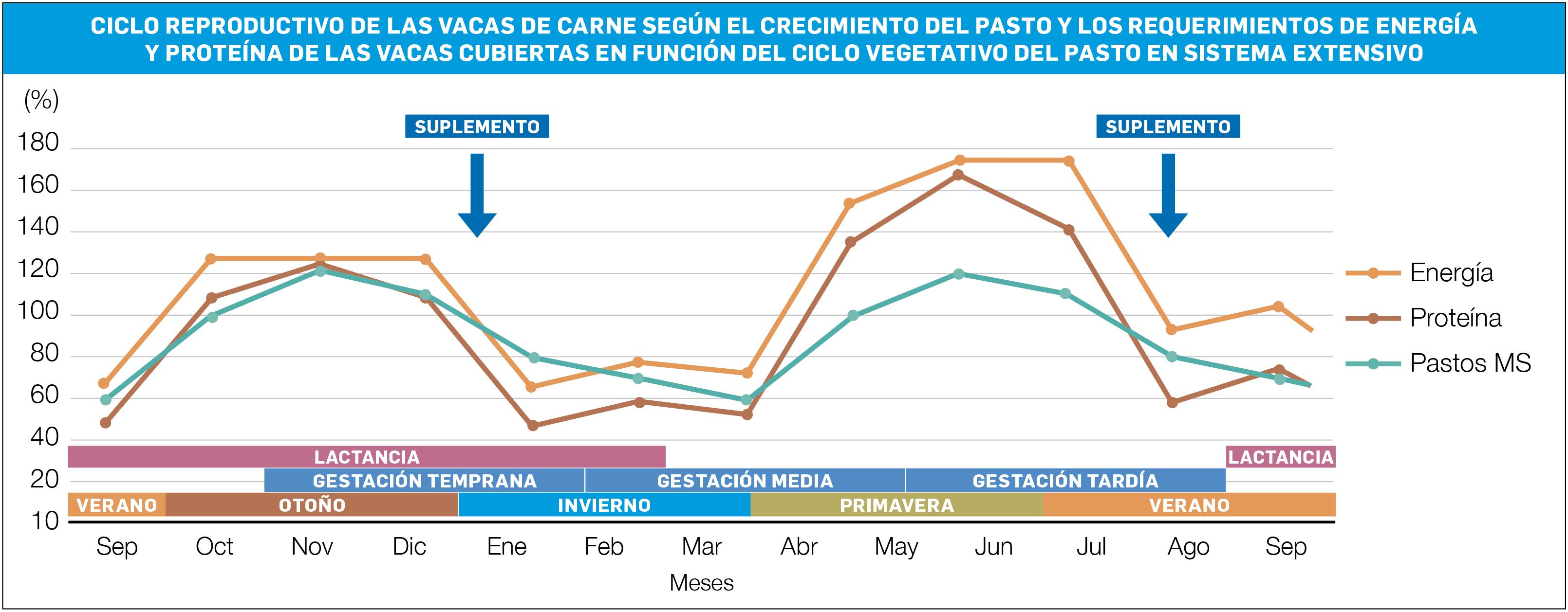 Gráfico 2 CG CICLO REPRODUCTIVO DE HEUS