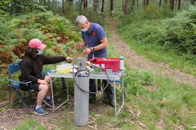 laboratorio portatil pino Galicia