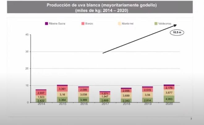 produccion de Godello Galicia