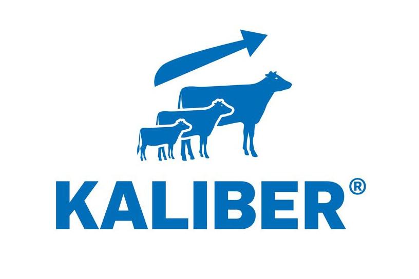 Logo Kaliber DE HEUS