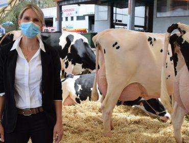 """""""As vacas galegas teñen calidade para participar en calquera certame europeo"""""""
