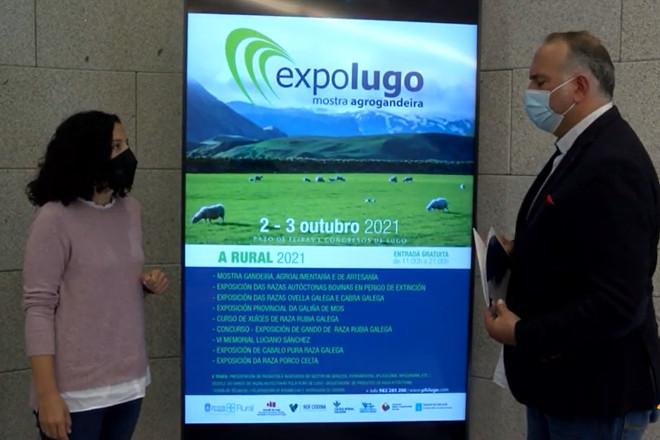 As razas autóctonas galegas, protagonistas este fin de semana de ExpoLugo 2021 A Rural