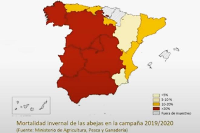 mapa incidencia varroa