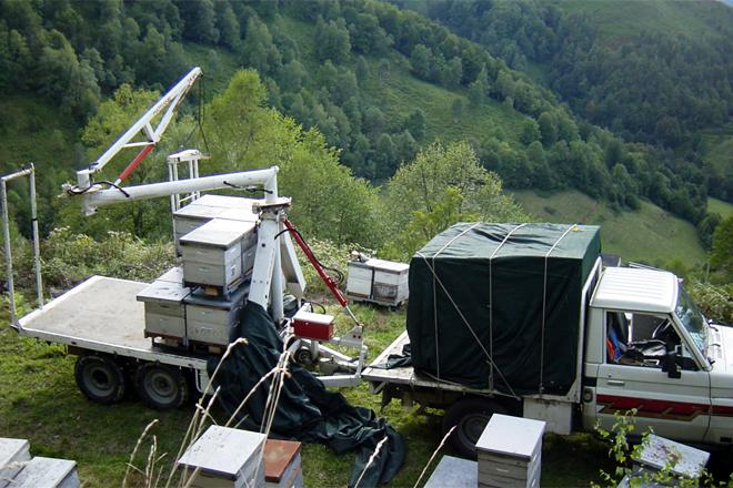 Trabajos de trashumancia en el apiario pirenaico de Gilles Fert