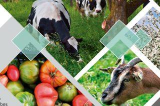 Curso en Lugo para a incorporación á gandería e agricultura ecolóxica