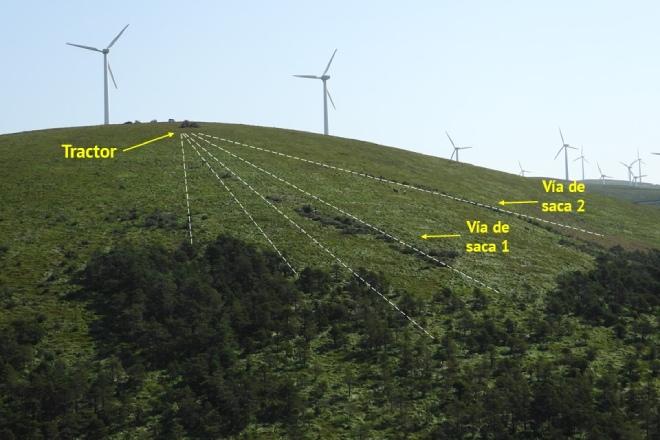 Vista xeral da zona de actuación o terceiro día de traballo, onde se ve a disposición de dous dos cordóns de madeira apiados nas vías de saca