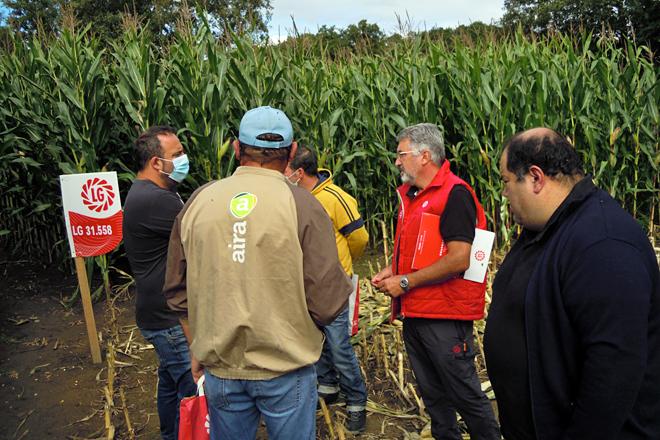 Un momento da visita de técnicos e gandeiros ao campo de ensaio de Sarria