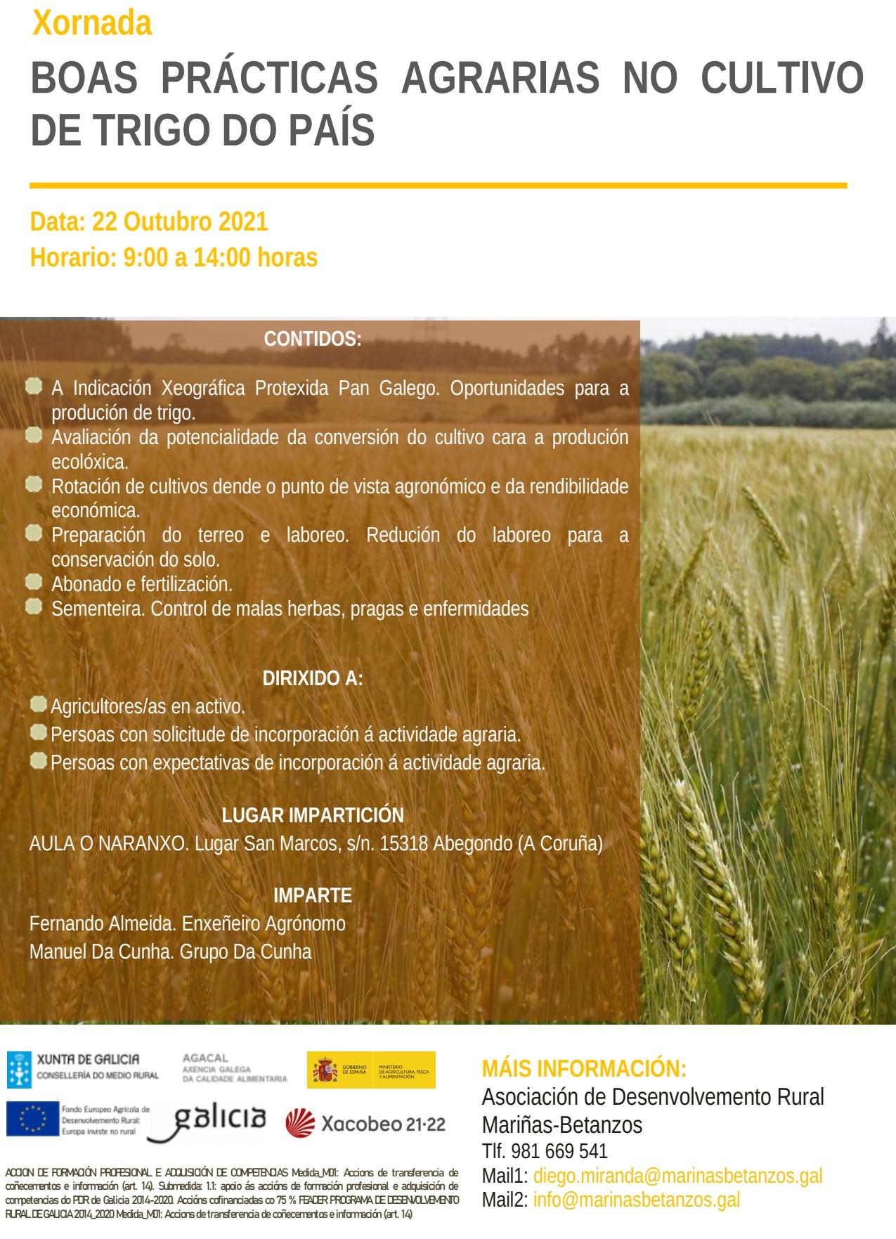 cartel xornada trigo